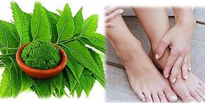 Beautiful feet with Neem leaves
